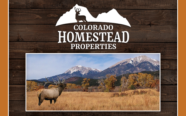 COLORADO HOMESTEAD PROPERTIES