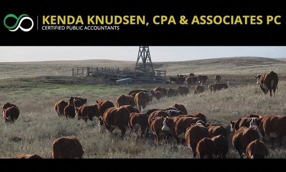KENDA KNUDSEN, CPA & ASSOCIATES PC