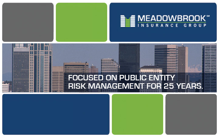 MEADOWBROOK INSURANCE GROUP