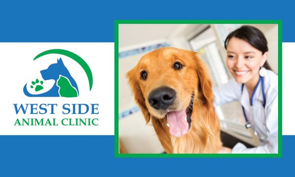 WEST SIDE ANIMAL CLINIC
