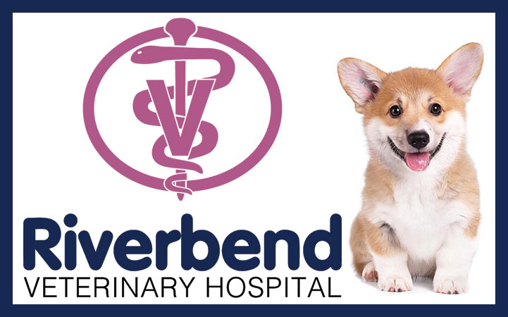 RIVERBEND VETERINARY HOSPITAL