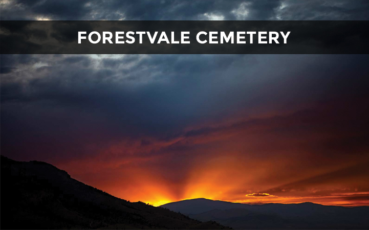 FORESTVALE CEMETERY DISTRICT