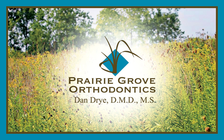 DAN DRYE, DMD, MS
