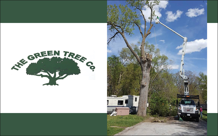 THE GREEN TREE CO.