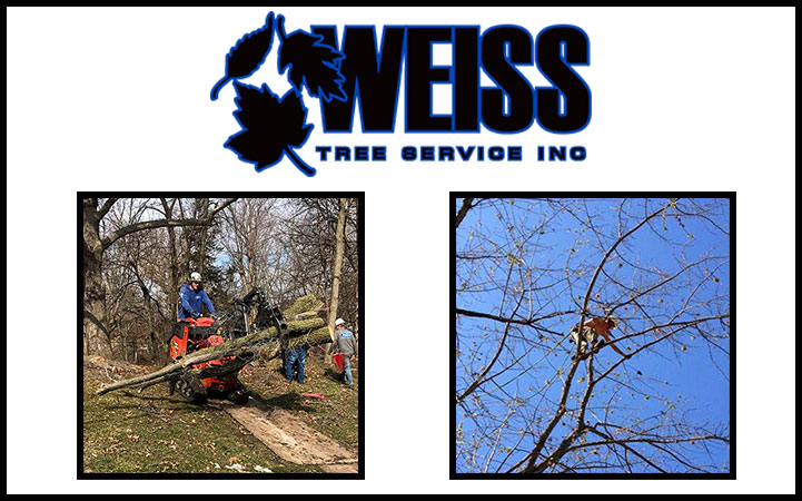 WEISS TREE SERVICE INC