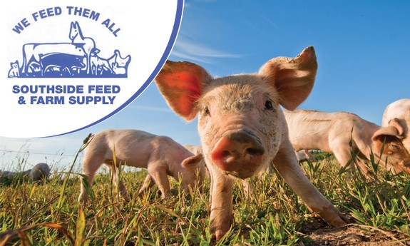 SOUTHSIDE FEED & FARM SUPPLY