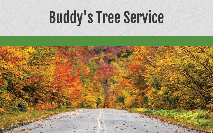 BUDDY'S TREE SERVICE