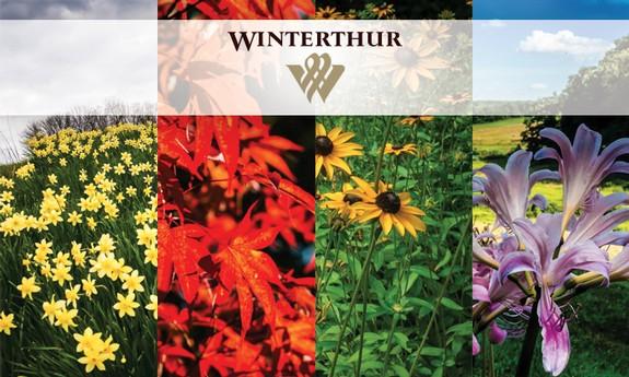 WINTERTHUR MUSEUM GARDEN / LIBRARY - Local BOTANICAL GARDENS in Winterthur, DE