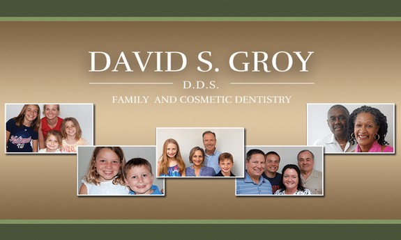DAVID S. GROY, DDS