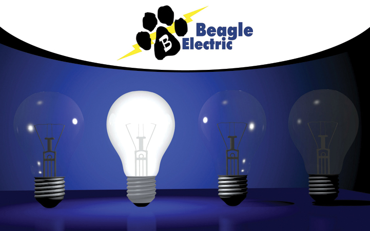 BEAGLE ELECTRIC