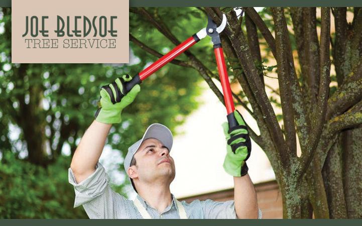 JOE BLEDSOE TREE SERVICE