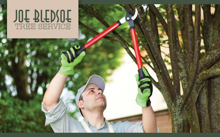 JOE BLEDSOE TREE SERVICE