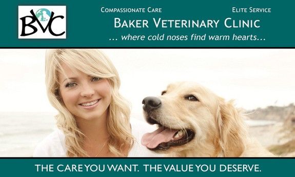 BAKER VETERINARY CLINIC - Local VETERINARIANS in West Palm Beach, FL