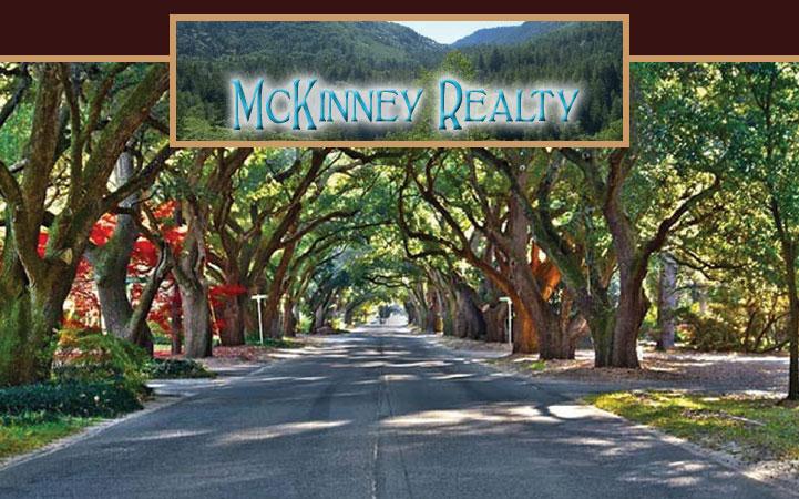 MCKINNEY REALTY