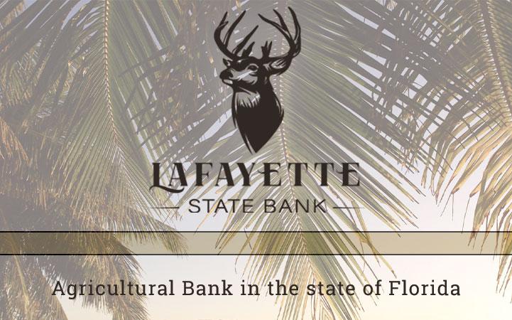 LAFAYETTE STATE BANK