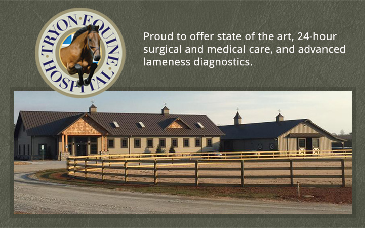 TRYON EQUINE HOSPITAL - Local VETERINARIANS in Columbus, NC