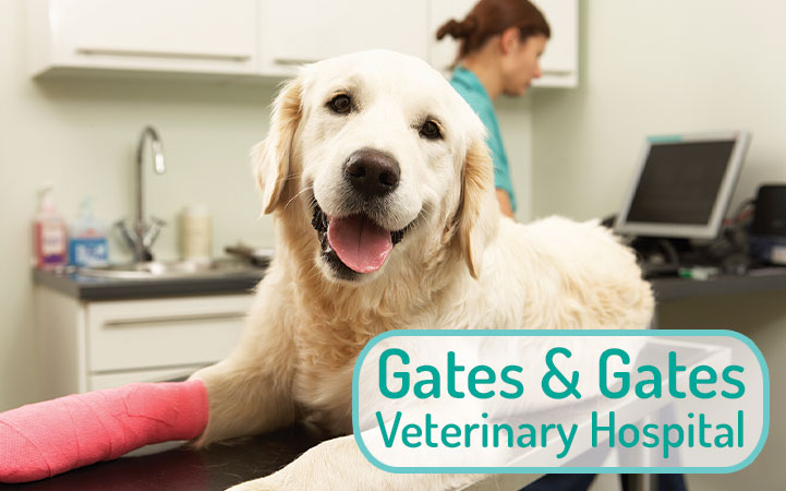 GATES & GATES VETERINARY HOSPITAL