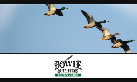 BOWIE OUTFITTERS