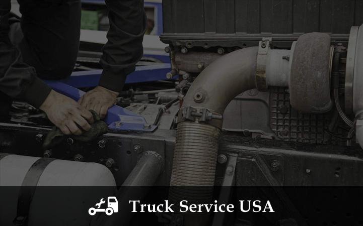 TRUCK SERVICE USA