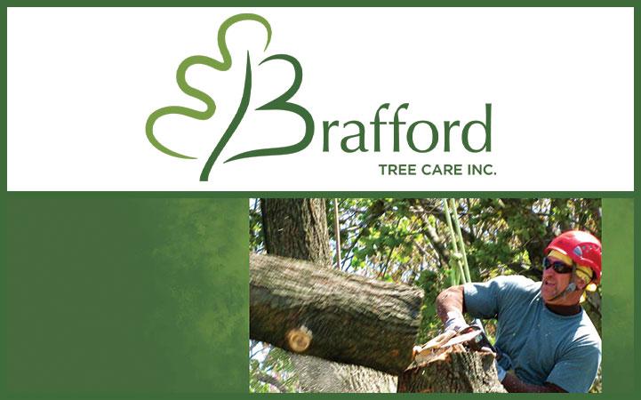 BRAFFORD TREE SERVICE
