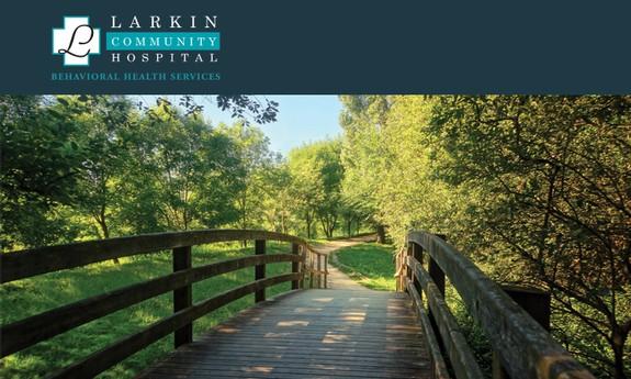 LARKIN BEHAVIORAL HEALTH SERVICES, INC.