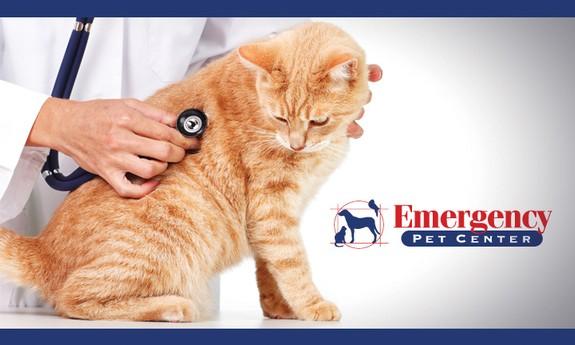EMERGENCY PET CENTER