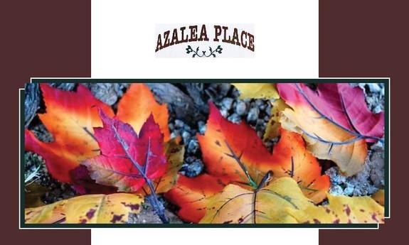 AZALEA PLACE APARTMENTS
