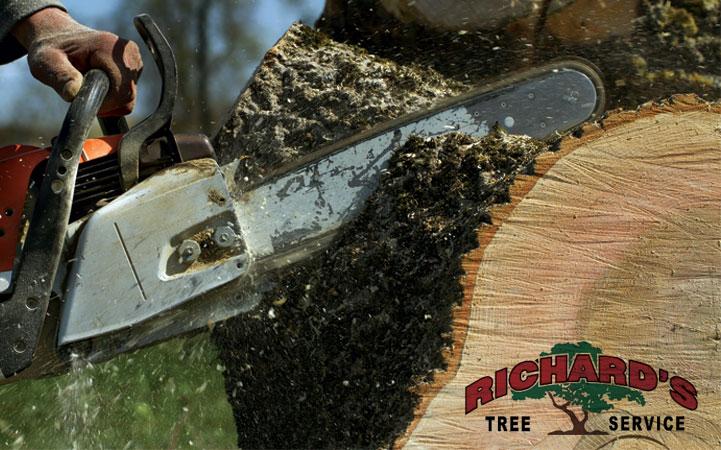 RICHARD'S TREE SERVICE, INC.