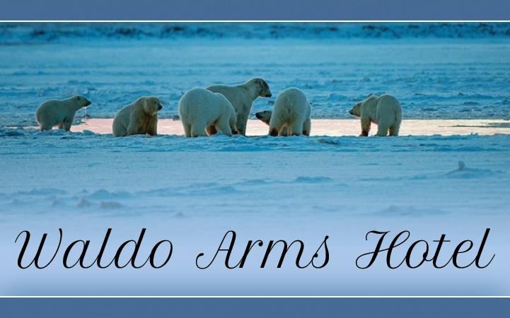 WALDO ARMS HOTEL