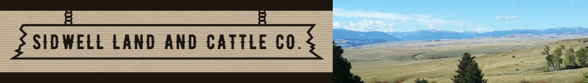 SIDWELL LAND & CATTLE CO