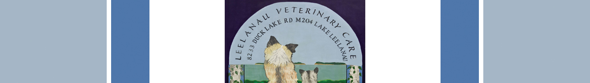 LEELANAU VETERINARY CARE