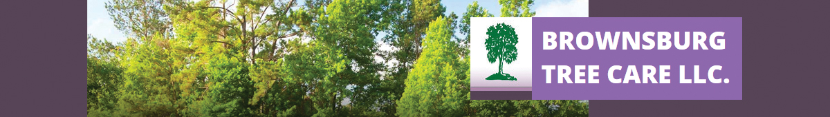 BROWNSBURG TREE CARE LLC.