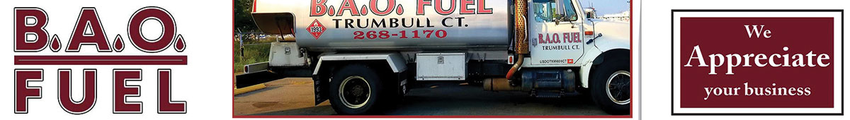 BAO FUEL, LLC