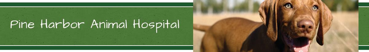 PINE HARBOR ANIMAL HOSPITAL